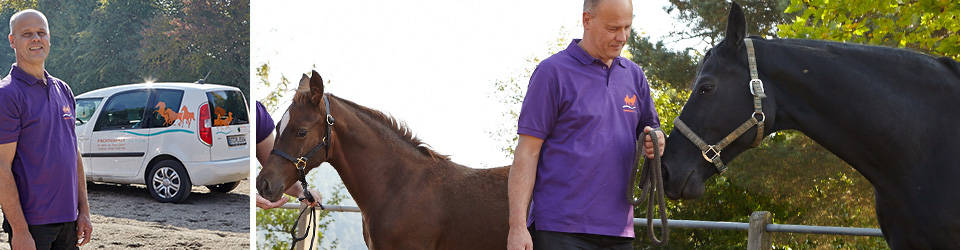 tierarztpraxis-pferde-linder-kontakt